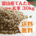 富山県産てんたかく玄米(一等米)30kg【28年度産】【送料無料】