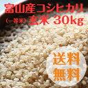 富山県産コシヒカリ玄米(一等米)30kg【28年度産】【送料無料】