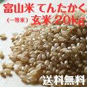 富山県産てんたかく玄米(一等米)20kg【29年度産】【送料無料】