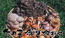 天然きのこ 盛り合せ500g秋の味覚 山の幸 山の恵み(食材)を盛り合わせ★養殖舞茸 し