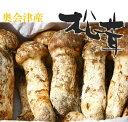 【松茸】松茸 国産 コロ(小型 蕾・中開き)約100g 奥会津産・山形県産 秋の味覚 山の
