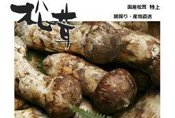 日本全国食材デー
