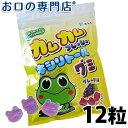 【あす楽】カムカムフレッシュ キシリトールグミ グレープ味1袋(12粒入)【メール便OK】