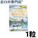 【お試し】モリムラ シシュテクトDX 1粒 メール便OK