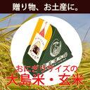 【新米】大島米おにぎりパック 玄米 150g【お土産・ギフト・贈り物向け】