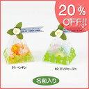 【20%OFF価格】【ブライダル...