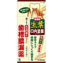 小林製薬 生葉口内塗薬20g 【あす楽対応】 933 【第3類医薬品】