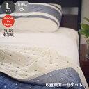 6重織マルチケット(L)(ドット)/送料無料