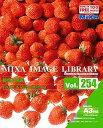 【中古】MIXA IMAGE LIBRARY Vol.254 野菜と果実