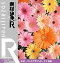 【中古】素材辞典[R(アール)] 033 バックグラウンド・花と植物