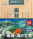 【中古】素材辞典 Vol.35 珊瑚・海の生物編