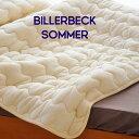 Billerbeck650