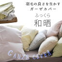 Cover-gaze046