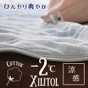 マイナス2℃シリーズ®Wメッシュ敷きパット爽涼加工キシリトール配合ヒンヤリマットシングルひんやりマット