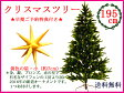 早期予約特典付き!クリスマスツリー195cmRS GLOBAL TRADE社(PLASTIFLOR社)【送料無料】アトリエニキティキ