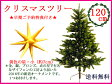 早期ご予約特典付き!クリスマスツリー120cmRS GLOBAL TRADE社(PLASTIFLOR社)【送料無料】 アトリエニキティキ