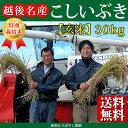 ★送料無料★こだわり特別栽培米こしいぶき玄米30kg【もりばやし農園自家栽培】