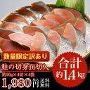訳あり【鮭の切身16切入】(合計1.4kg以上)で送料無料