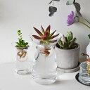 RoomClip商品情報 - KINTO●AQUA CULTURE VASE L ●キントー アクアカルチャーベース●水耕栽培●花瓶