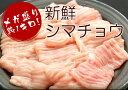 【もつ鍋ホルモン追加トッピング】新鮮シマチョウ 約1キロ!たっぷりホルモンを食べたいあなたに!モツ鍋