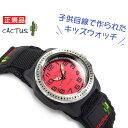 【CACTUS】カクタス クォーツ アナログ キッズ こども 用 腕時計 レッド ブラック ベルクロベルト CAC-45-M07【あす楽】
