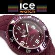 【おまけ付き】 ICE WATCH アイスウォッチ ice sixtynine アイスシックスティナイン クォーツ 腕時計 メンズ レディース 43mm ミディアム バーガンディ 007274 送料無料 【国内正規品】【あす楽】