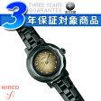 【SEIKO WIREDf】セイコー ワイアードエフ レディース腕時計 BLACK COMPILATINO ブラックコンピレーション オールブラック×ゴールド AGEK730【送料無料】【正規品】【ネコポス不可】