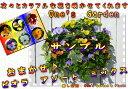 癒し空間 One's Gardenのおまかせビオラのハンギングバスケット(空中寄せ植え)秋から春バージョン♪【送料無料商品です】
