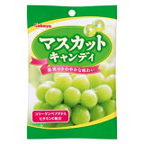 总额超过二千四日元!马斯喀特糖果1袋 - 共100日元,超过2400元的统一Kabaya! ;[カバヤ マスカットキャンディ 1袋 【HLSDU】]