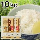 兵庫県産キヌヒカリ10kg【smtb-k】【kb】【送料無料!】