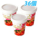 65 g of tom yum goong cup noodles 36 [free shipping!]
