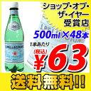 サンペレグリノ 500mlPET 48本 (炭酸水)【送料無料】