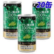神戸居留地 ぶどうと微炭酸 100% 缶 185ml×20缶
