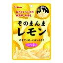 ライオン菓子 そのまんまレモン 25g