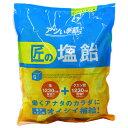 『売切れ御免』サラヤ Gains 匠の塩飴 レモン味 750g