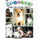 DVD こいぬとあそぼ TMW-046 子犬 イヌ どうぶつ...