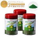 グリーンマグマ 170g【3個セット+15包45g増量】 日本薬品開発 大麦若葉 青汁 酵素 赤神力
