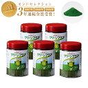 グリーンマグマ 170g【5個セット+30包90g増量】 日本薬品開発 大麦若葉 青汁 酵素 赤神力