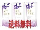 【送料無料】紫根化粧水(しこんけしょうすい) 100ml 3本セット【あす楽対応】【HLS_DU】