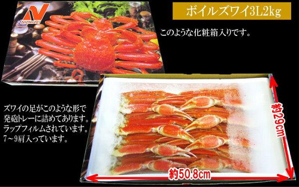 ���եȤ��������ꥺ�磻����̵������/��/���襤��̳�ѡ�������եܥ��륺�磻����(�?��)�極����2kg(��6����12��������)�饻�åȤ櫓���ꥮ�ե��Բ�(����ܡ���Ȣ���δʰ�����)�С��٥��塼����BBQP12Sep14