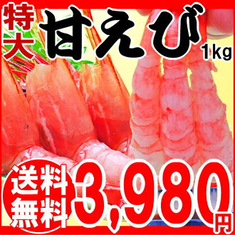 1 kg of sweet shrimp 1kg/ sweet shrimp / sweet shrimp (approximately around 50-55) extra-large 2L size correspondence [/ set / barbecue set barbecue materials for comfortable ギフ _ birthday family celebration / shrimp / shrimp / sashimi]