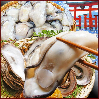 Miya-jima set (1 kg of Hiroshima oyster *1 bag, five unshelled steaming oyster (スチームカキ) medium size *3 bag)