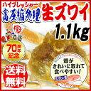 生 ズワイガニ 姿切りガニ 殻むき 簡単 1.1kg 約2尾...