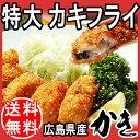 お中元 ギフト お中元ギフト 広島県 牡蠣 【送料無料】カキフライ 特大 1個約40g×20P