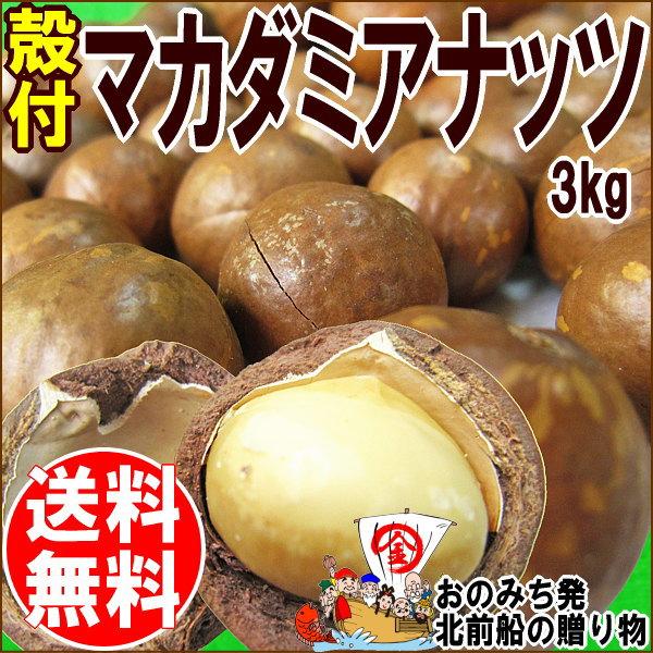 マカダミアナッツ 送料無料 殻付き マカデミアナッツ3kg(1kg×3袋) オーストラリア産 ロースト 製菓材料 ナッツ おつまみ おやつ ※専用のナッツクラッカーが必要です パルミトレイン酸