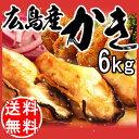広島県 牡蠣 カキ 牡蠣/鍋【送料無料】広島県産(業務用)冷凍 牡蠣(かき)特大1kg×6袋 広島産 カキフライ 鍋セット/バーベキューセット 532P14Oct16