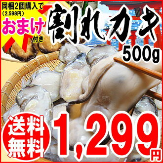 After / pan set / marine products ※ correspondence, gift impossibility that there is / Wake whom / カキ / I whom there is oyster reason with the discount in write it by two bundling purchase (2,598 yen), and there is 500 g of / Hiroshima product freezing breaking oyster (persimmon) Hiroshima product fried oysters / reason in in, two days later send