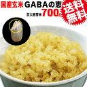 GABAの恵 国産 巨大胚芽米 ギャバ 700g×1袋 玄米《白米モードで炊けます》送料無料 国内産100% お米 スーパーフード 食物繊維・ビタミン たっぷり ※日時指定不可 スーパーフード 雑穀