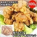 河原精肉店 からあげセット(からあげ粉付き500g)【送