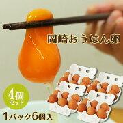 岡崎おうはん卵 6個入り×4パック(24個セット) 大分ファーム/農場HACCP認証農場【送料無料】【敬老の日ギフトクーポン】